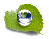 precision-joint-solution-healthy-planet-environment-eco-friendly-recyclable